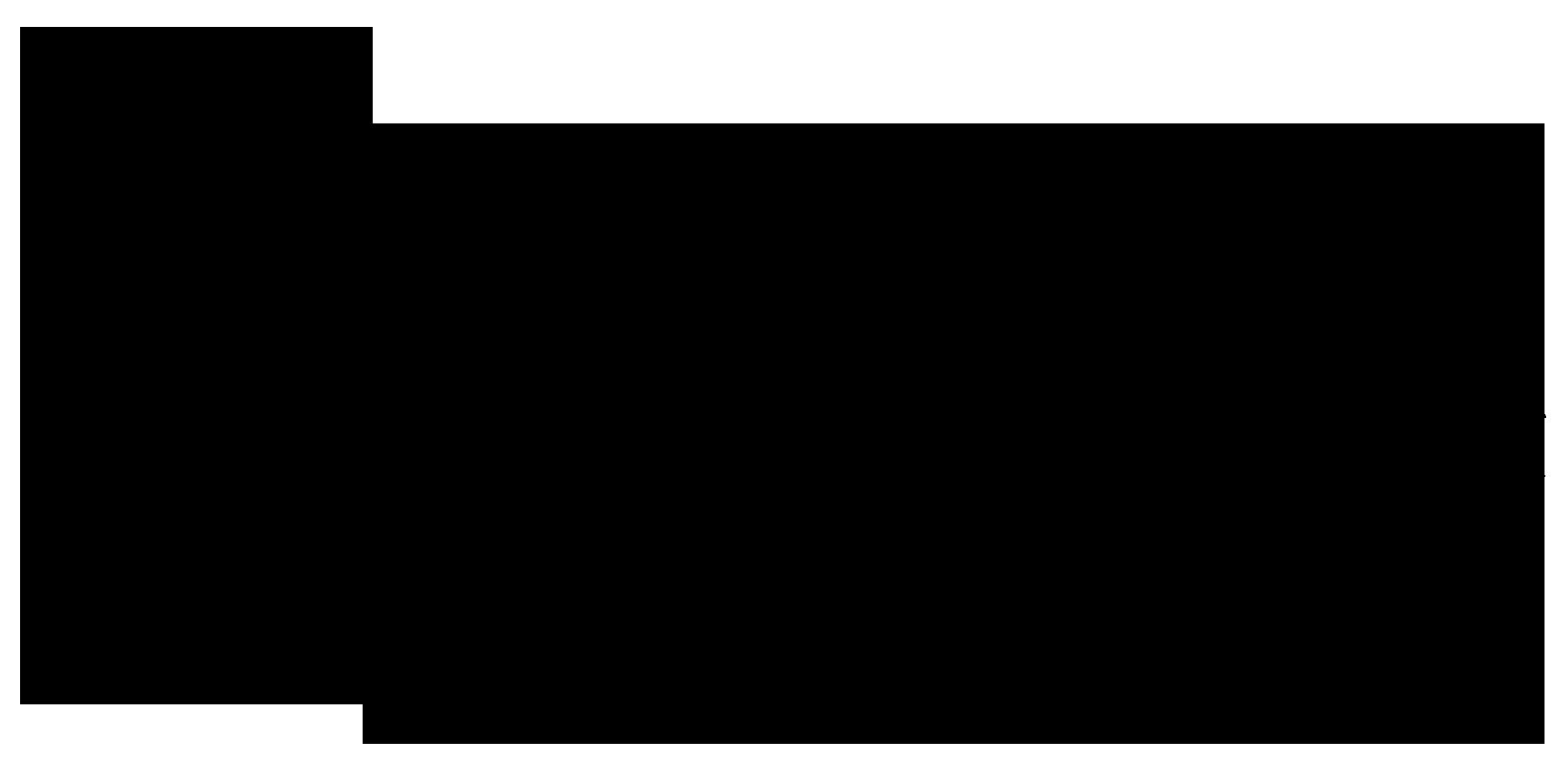 datasurvey-logo-black