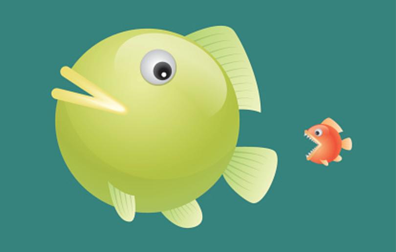 Xebia_SwimmingFasterFish2-Software-Development-Digital-Transformation-Agile.png